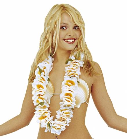 b24cbb09325 <p>2428I Hawai kaelaehe Aloha 5,10 ...